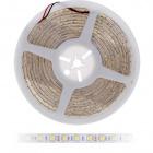 Fita LED 12Vdc 12W/m 60LED/m 3000K IP68 5m/rolo