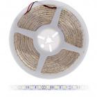 Fita LED 12Vdc 12W/m 60LED/m 6500K IP68 5m/rolo